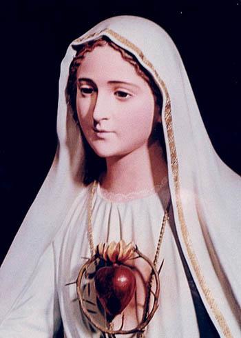 http://www.salvemariaregina.info/Images/IHM-Fatima1.jpg